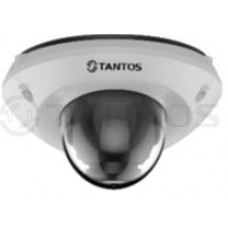IP видеокамера купольная антивандальная с ИК подсветкой, двухмегапиксельная TSi-Dn225FP (2.8)