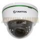 Видеокамера купольная с ИК подсветкой двухмегапиксельная TSi-De2FPA (4)