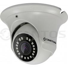 IP видеокамера уличная антивандальная с ИК подсветкой, двухмегапиксельная TSi-Ee20FP (3.6)