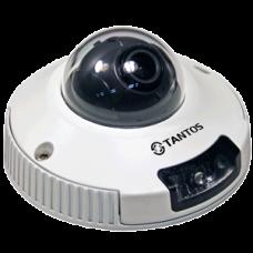 IP Видеокамера купольная компактная антивандальная с ИК подсветкой TSi-DVm221F (3.6)