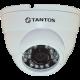 IP видеокамера уличная купольная антивандальная TSi-Dle1F (3.6)